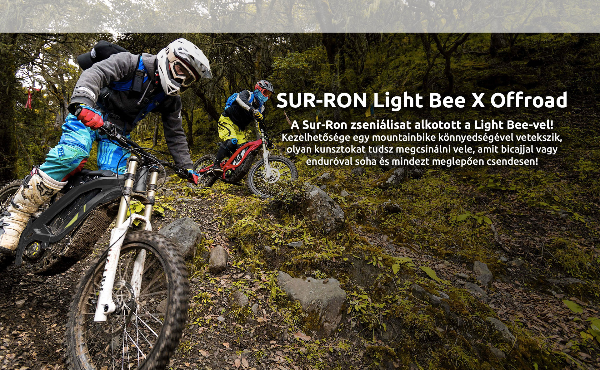 Sur-Ron Light Bee X offroad